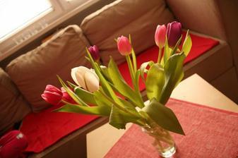 Tak a budu tulipany :)