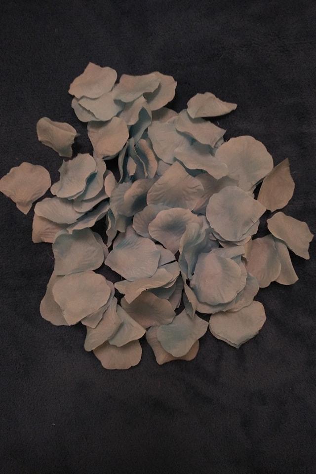 Bledomodré lupene ruží - Obrázok č. 1