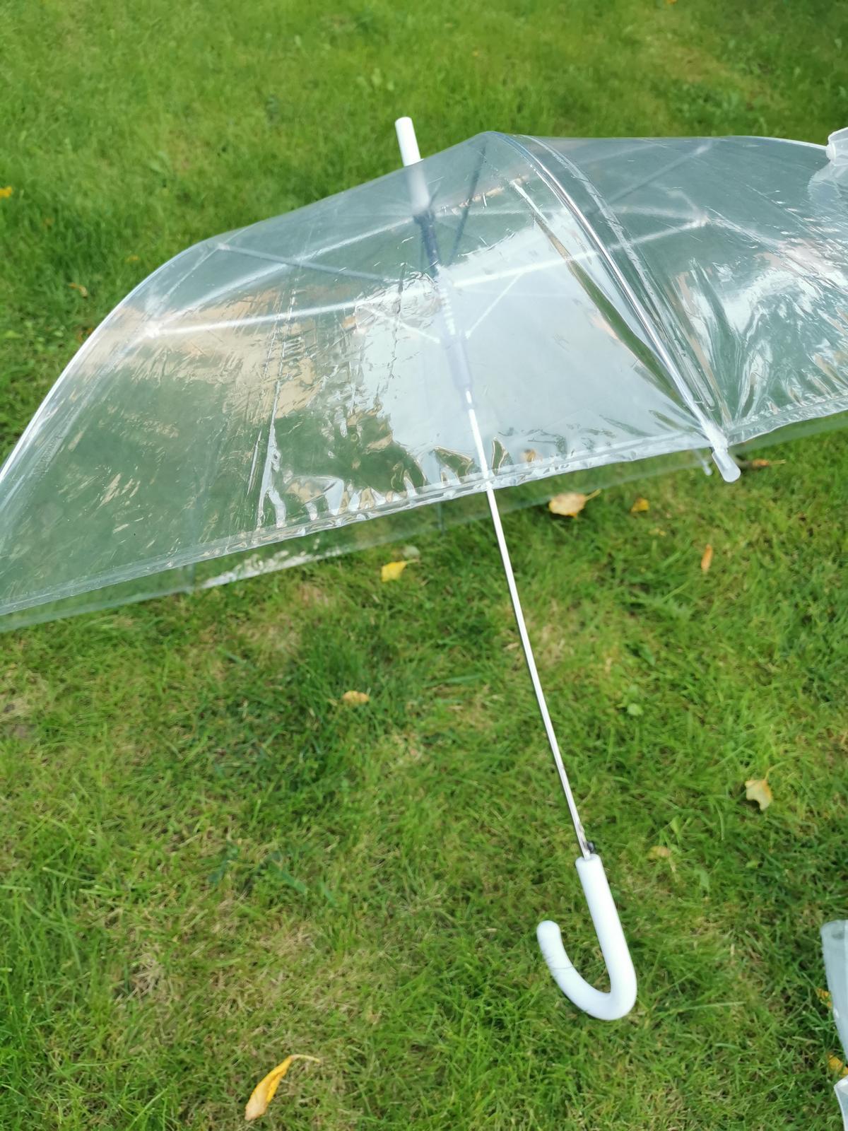 Průhledný deštník - Obrázek č. 1