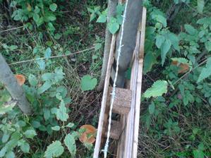 natiahnutý ostnatý drôt a prémia na záhradke:)