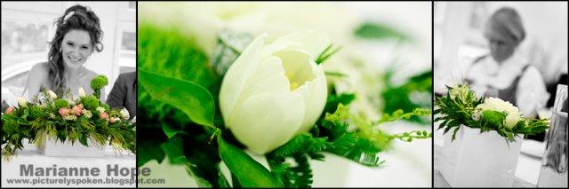 Kvetinove aranzma - Tulip, BA