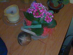 kytička od tchýně s tchánem, snad mně nezdechne, já na živé květy moc nejsem :-D