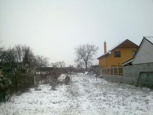 A takto v zime