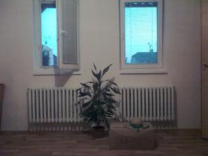 obývačka...a môžu byť vianoce ozdoby su už v dome :-)