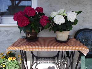 stolík zo singerky a na nej moje milovane hortenzie