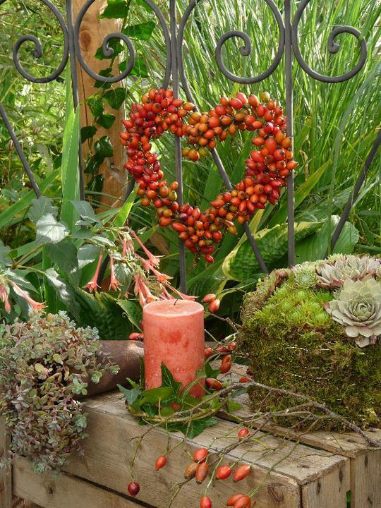 Terasa a zahrada - inšpirácie - jesenná atmosféra...