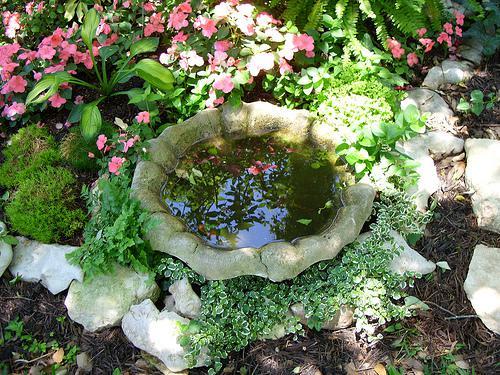 Voda v záhrade - Obrázok č. 153