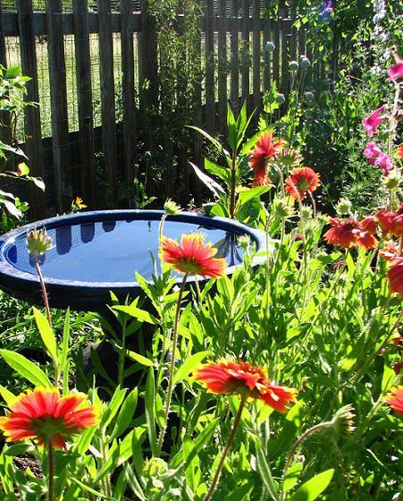 Voda v záhrade - Obrázok č. 154