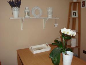 jedalensky kut a moja orchidejka, zakvitla uz po 3 krat