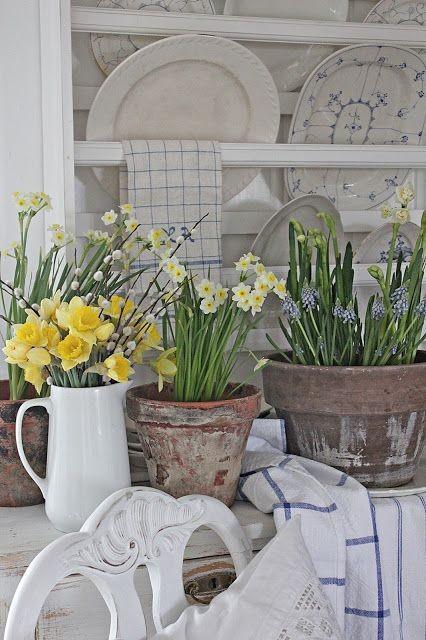 Vôňa jari - Obrázok č. 589