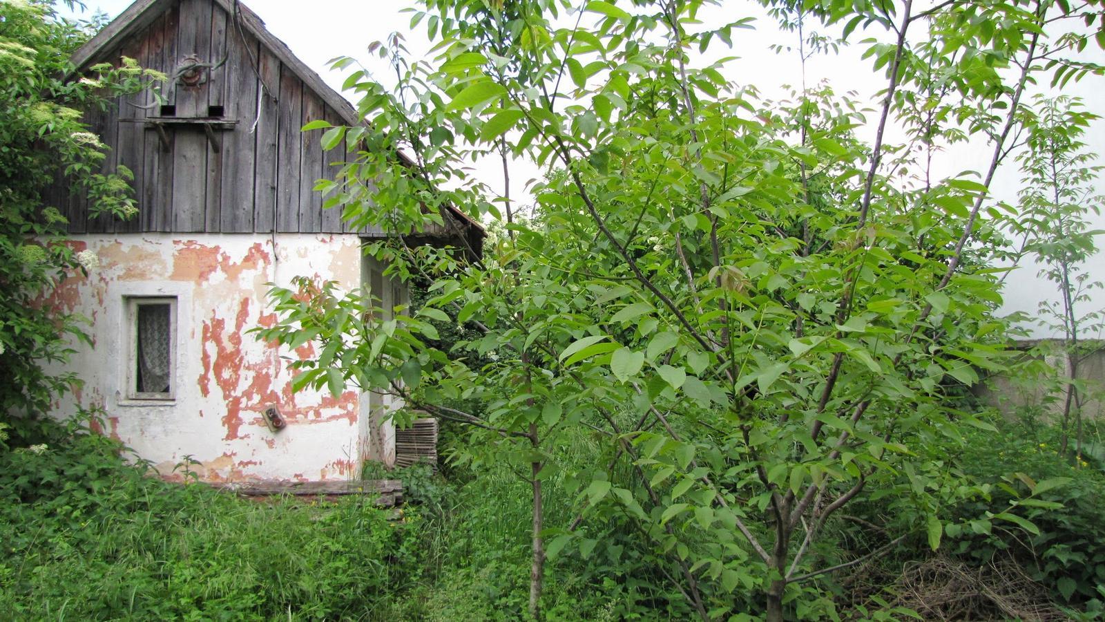 Rekonštrukcia starého domčeka - Letná kuchynka .V budúcnosti asi garáž.