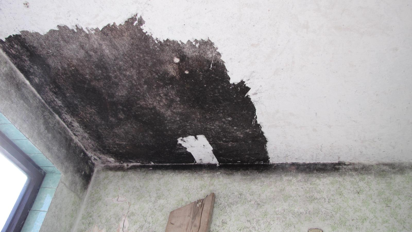 Ratnovce - Takéto krásne čierne stropy dosiahnete v dome ak v ňom 15 rokov neotvoríte okná.