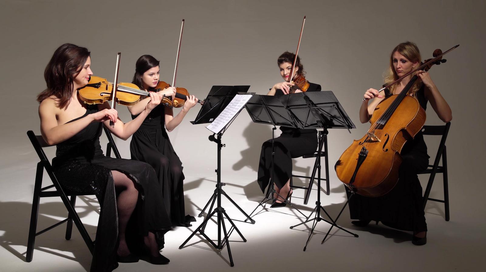 sláčikové kvarteto - Obrázok č. 1
