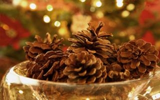 Iné, netradičné vianoce a všetko s tým spojené :-) - Obrázok č. 60