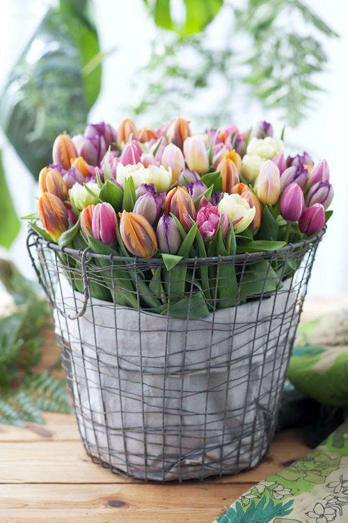 Co si dáme do vázy...malá inspirace... - Obrázek č. 37