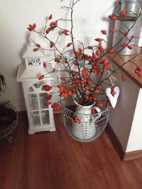 Podzimní inspirace - Obrázek č. 42