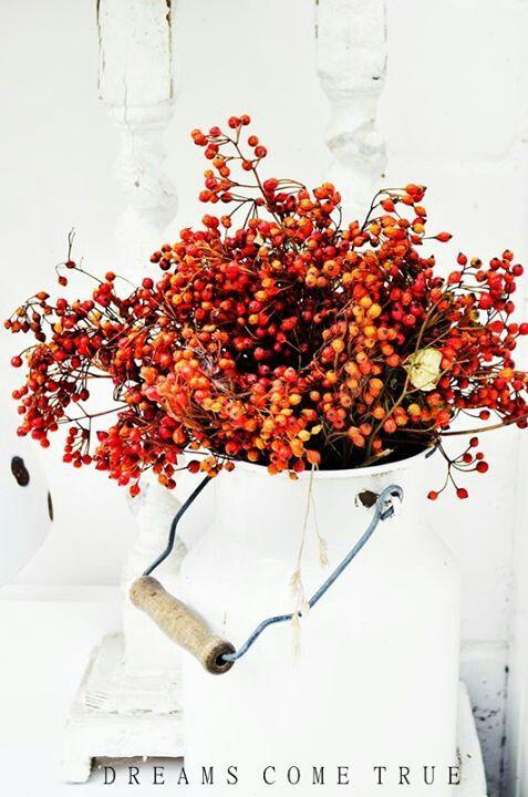 Podzimní inspirace - Obrázek č. 46
