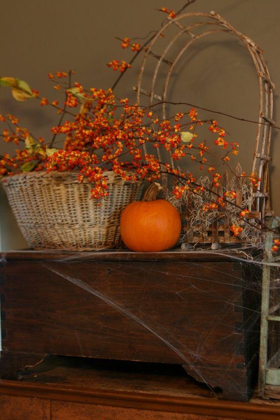Podzimní inspirace - Obrázek č. 55