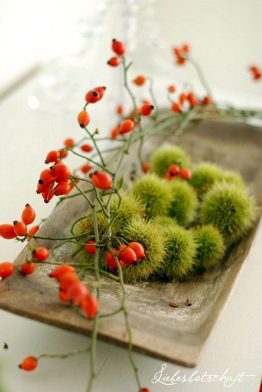 Podzimní inspirace - Obrázek č. 63
