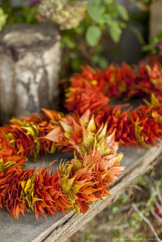 Podzimní inspirace - Obrázek č. 87