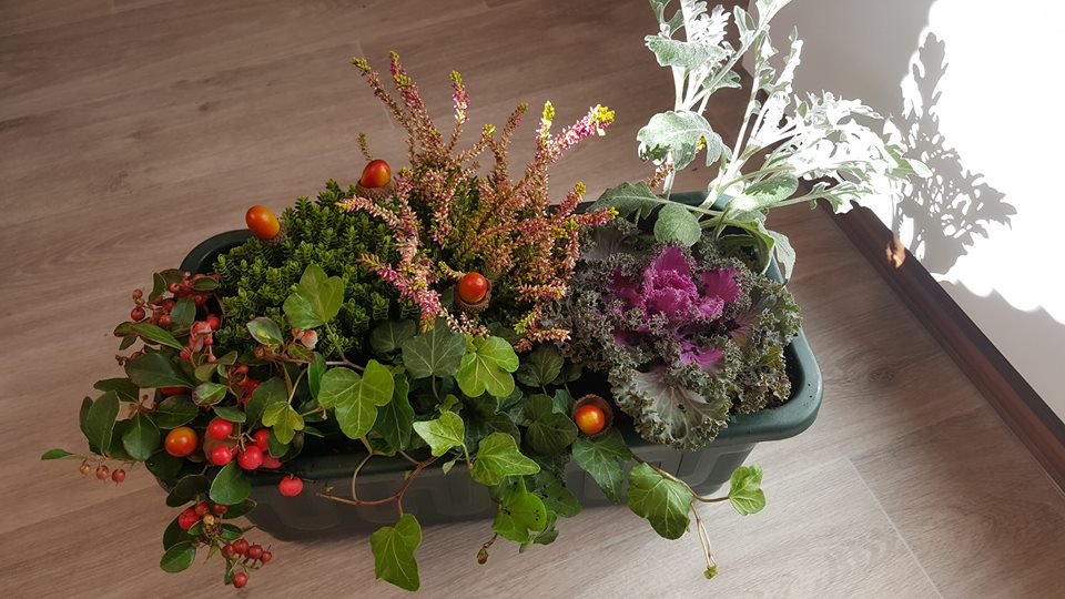 Střípky z domova - Podzimní truhlík