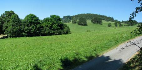 pozemek (hned za cestou)