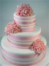 torta zatial vyhrava tato, len v nejakom zlatom odtieni...dufam, ze sa to podari aj zrealizovat