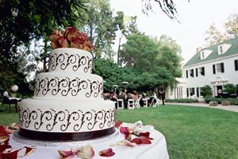 ..torta