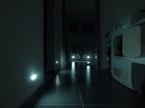 noční světýlka, k nezaplacení