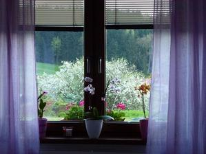výhled z ložnice miluju
