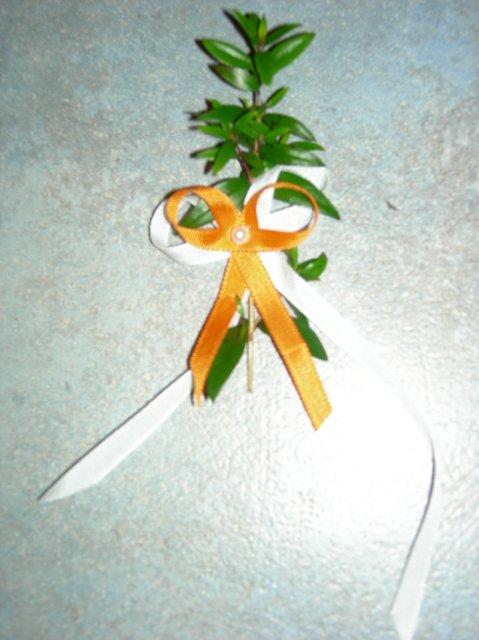16.9.2006 - pro svatebčany