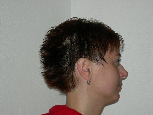 16.9.2006 - Obrázek č. 17