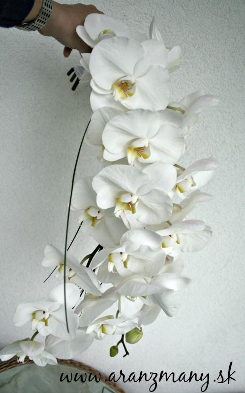 Gabriela Turanská - aranžmány - netradičná kytica z phalaenopsisu
