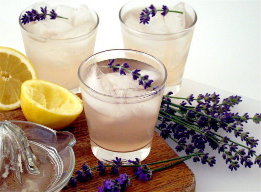 Domace limonady do Candy Baru - Levandulova limonada