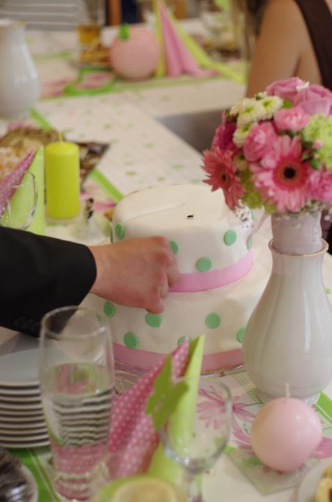 Lucie{{_AND_}}Jiljí - mucha na dortu a naše náááádherná výzdoba:-)