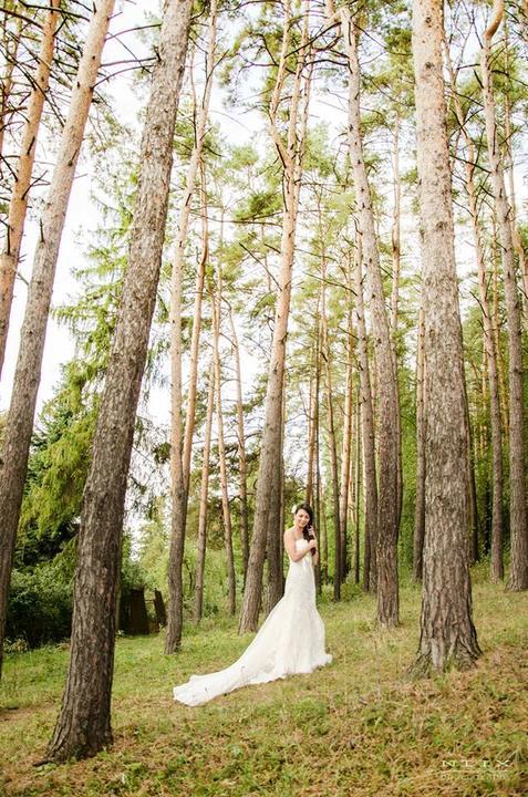 Prvé svadobné foto - Obrázok č. 9