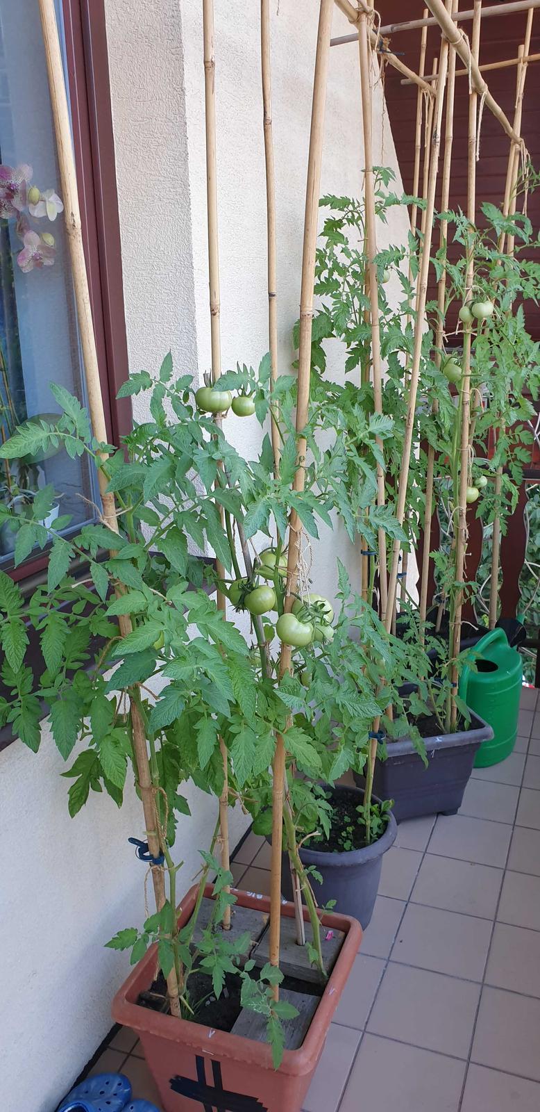 @evamama No, balkon mame... - Obrázok č. 2