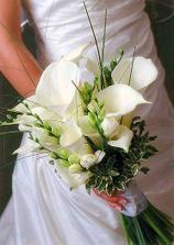 ... podľa mňa, najviac by sa mi k svadobným šatom hodila táto...