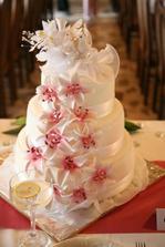 dort nevěsty a ženicha ...14kg