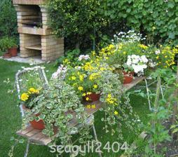 kvety na výzdobu
