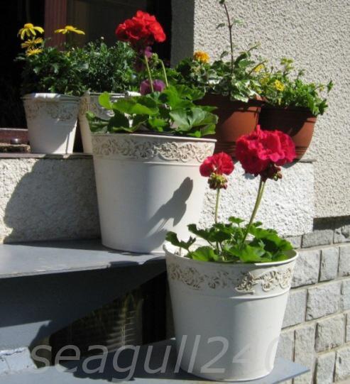 Mirka&Ivko - kvety na výzdobu