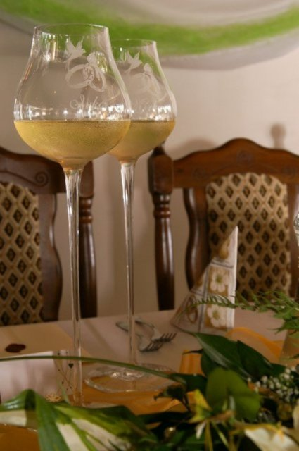 Mirka&Ivko - naše poháre