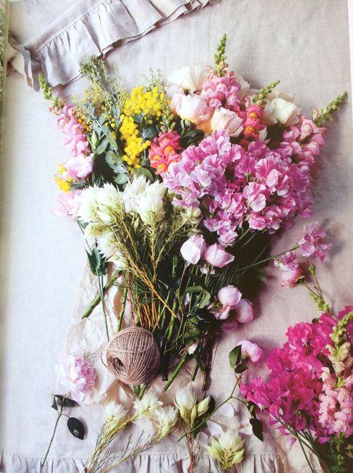milujem kvety ich vôňu a farby!!!! - Obrázok č. 1