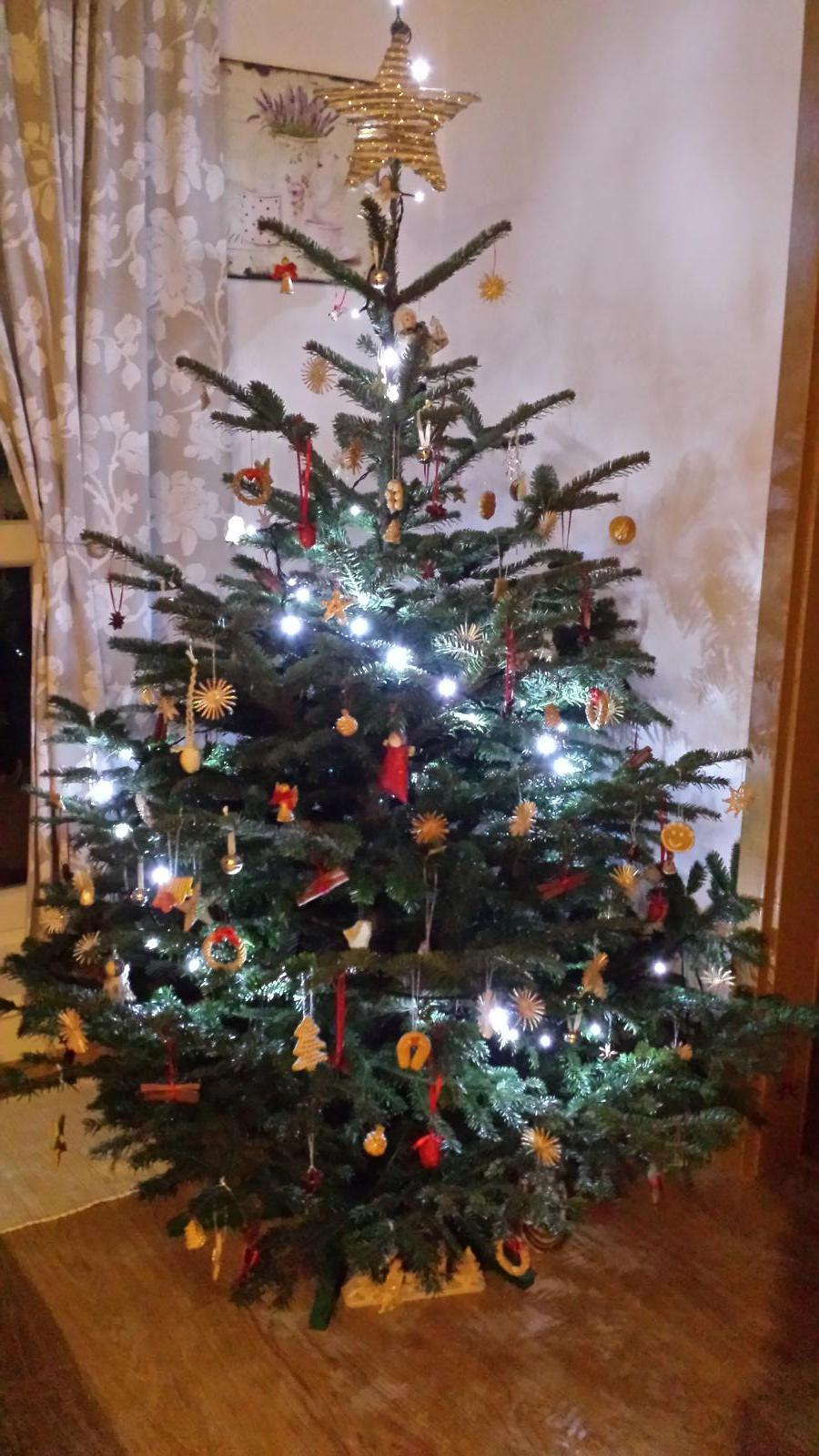 Našu prvú polročnicu sme si vychutnali pri zdobení stromčeka. Veselé Vianoce!;) - Obrázok č. 1