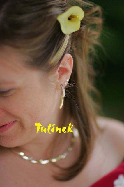Katka a Juraj neco pro inspiraci z nasi svatby - nausnice