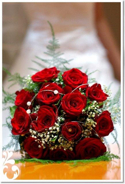 Vyzdoba, kvety...... - Obrázok č. 18