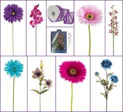 tyrkysová chryzantéma