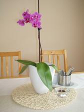 udělala jsem si radost a koupila si nový květináč na orchidej