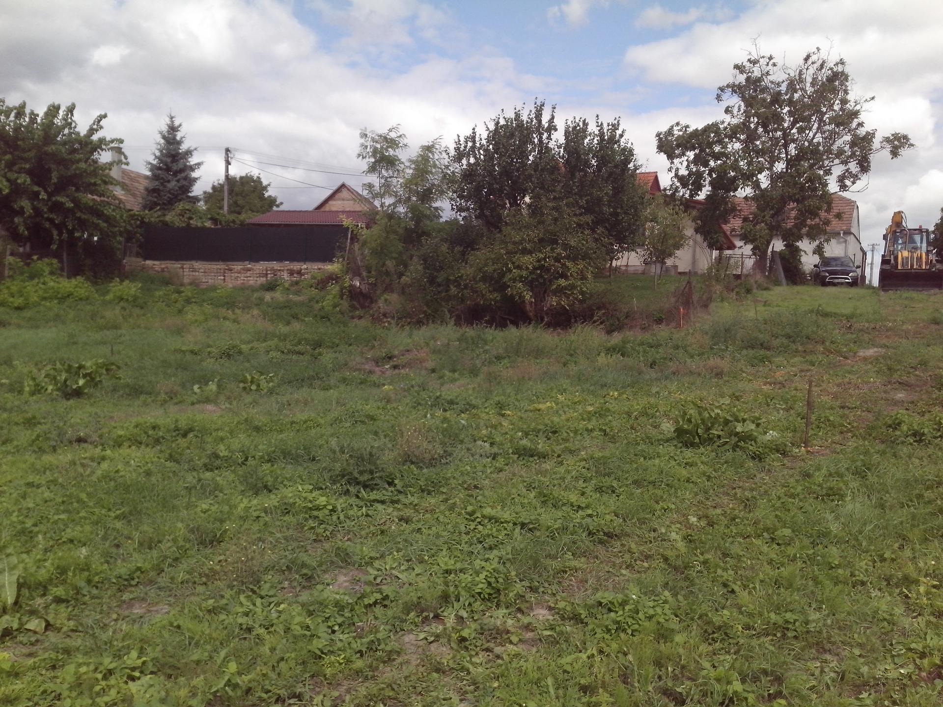 Pivnicka v záhrade - povodny teren este bez domu cca 7 rokov dozadu...