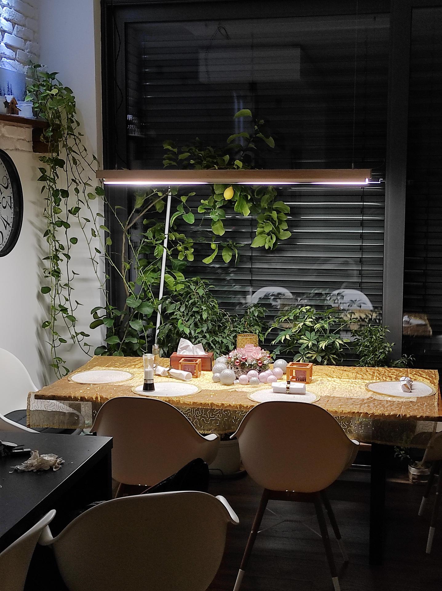 Orechový stôl - Obrázok č. 2